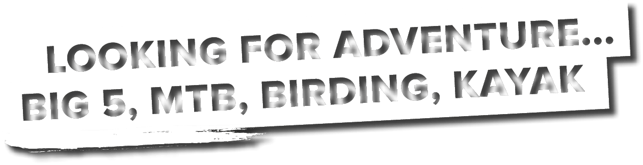 Looking for adventure... Big 5, MTB, Birding, Kayak